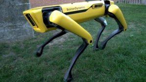 Роботы-собаки поступят в продажу уже в 2019 году