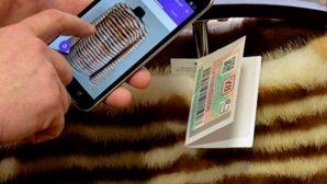 С сентября в Казахстане запрещена продажа меховых изделий без контрольно-идентификационных знаков