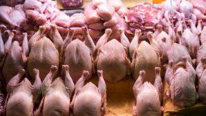 Мясо птицы уже можно везти в Казахстан через Россию