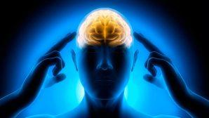 Простые и доступные способы избежать возрастных разрушений мозга
