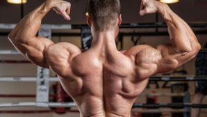 Ученые доказали, что сила мышц влияет на деятельность мозга