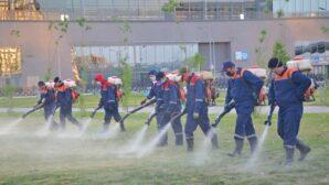 В Нур-Султане против комаров обработано более 230 млн кв. метров