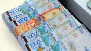 Глава Минтруда высказался о компенсации казахстанским медикам